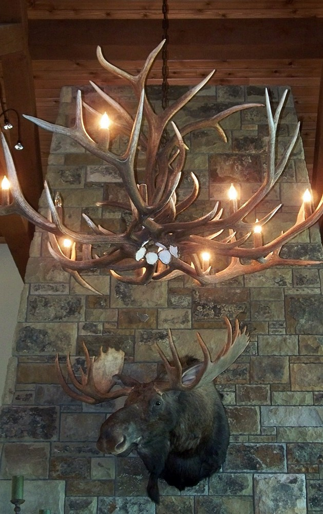 Large Elk Antler Chandelier