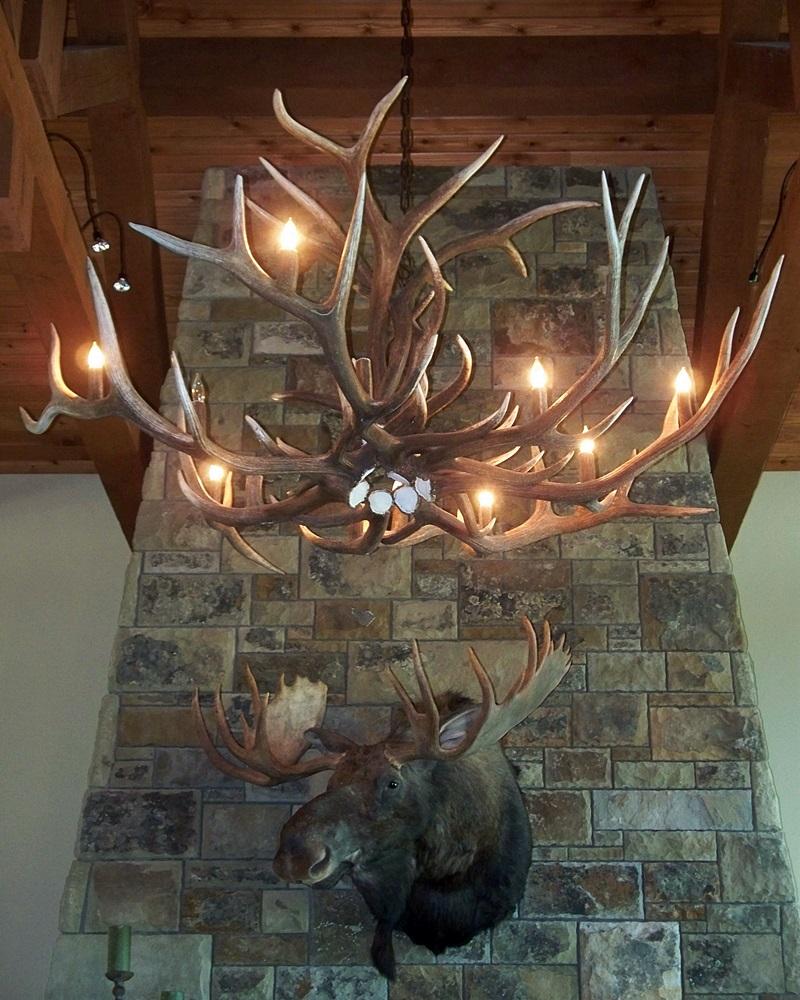 Chandeliers drokes antler art large elk antler chandelier arubaitofo Image collections