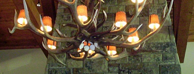 Large Elk Antler Chandelier with Lamp Shades