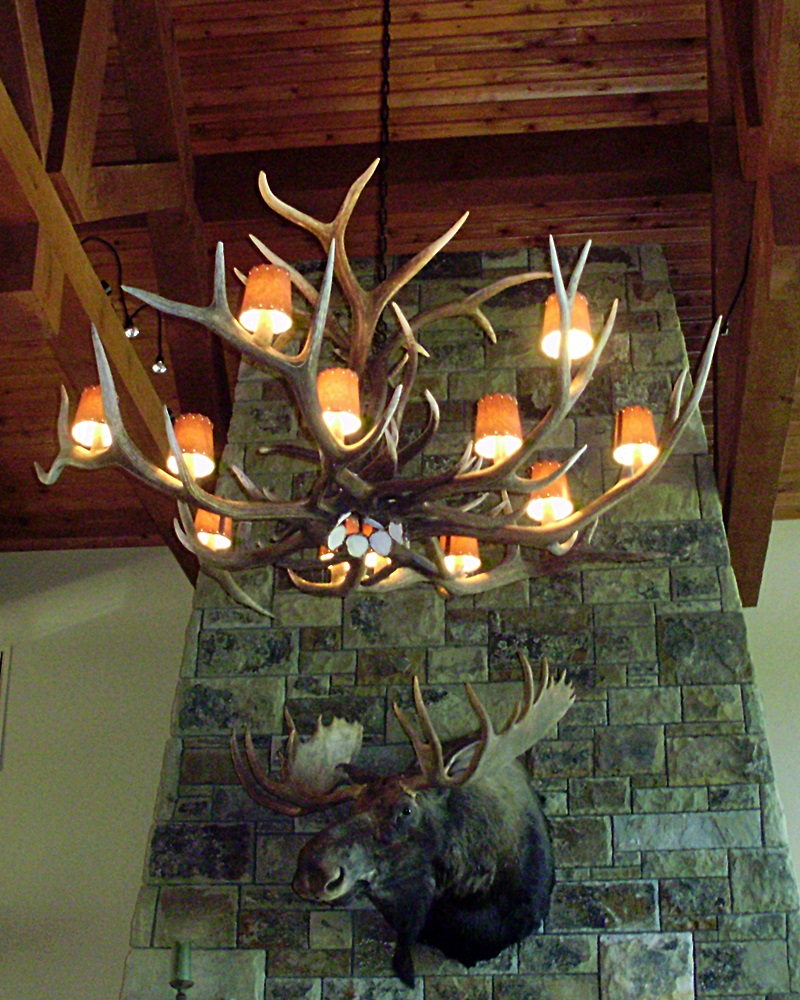 Large elk antler chandelier with lamp shades drokes antler art large elk antler chandelier with lamp shades aloadofball Image collections