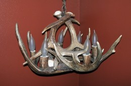 Small Whitetail Chandelier