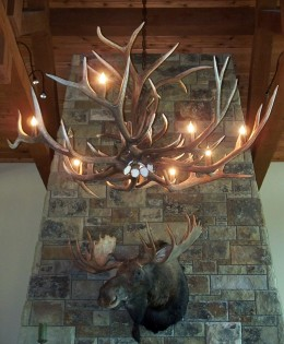Large Elk Antler Chandelier
